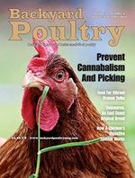 Backyard Poultry Magazine Cover