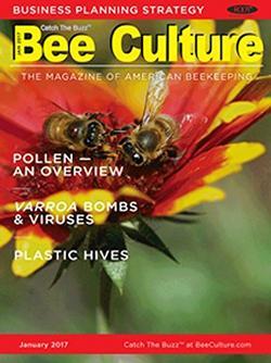 Bee Culture Magazine Cover