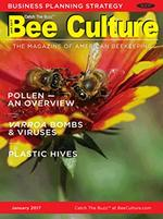 Bee Culture Magazine Cover