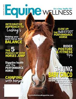 Equine Wellness Magazine Cover