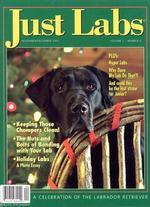 Just Labs Magazine Cover
