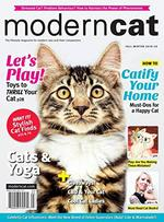 Modern Cat Magazine Cover